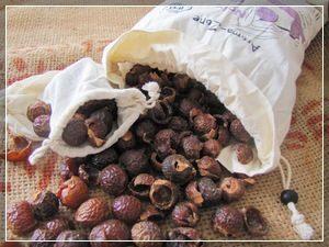 Мыльные ягоды Мукоросси
