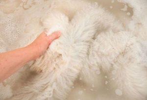 Как стирать овечью шкуру