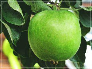 Как отстирать пятно от яблока с одежды