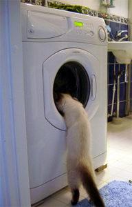 Стиральная машина стирает