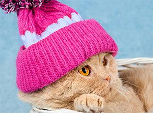 Как постирать вязаную шапку